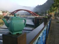 台湾文山包种茶